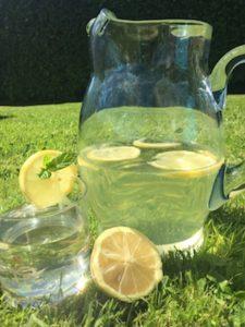 Lemonbalm & Mint Cordial